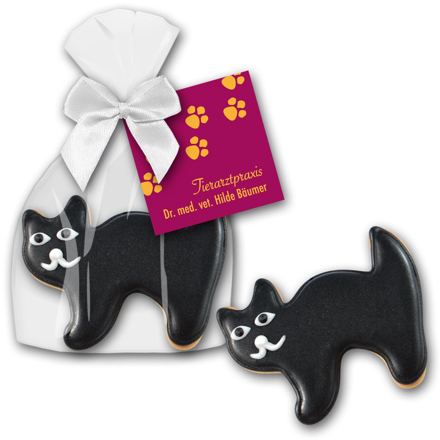 Cookie Katze